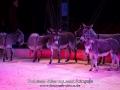 CircusProbstOldenburg2016_4